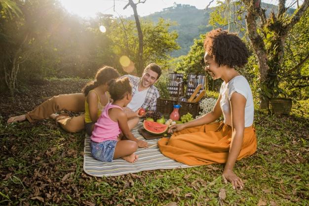 պիկնիկ-երեխաների-հետ